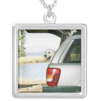 Lourensford, Somerset West, South Africa Silver Plated Necklace