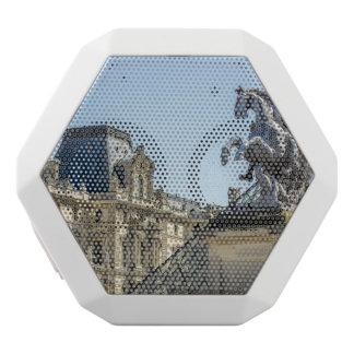 Louvre Horse Statue, Paris Travel Photograph