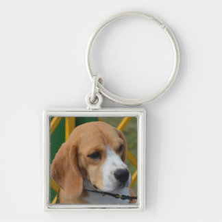 Lovable Beagle Key Ring