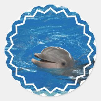 Lovable Dolphin Round Sticker