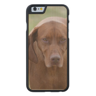 Lovable Vizsla Carved® Maple iPhone 6 Slim Case