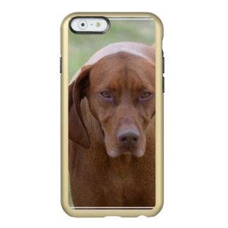 Lovable Vizsla Incipio Feather® Shine iPhone 6 Case