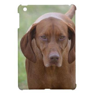 Lovable Vizsla iPad Mini Covers