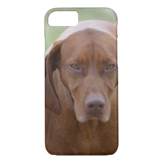 Lovable Vizsla iPhone 7 Case