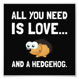 Love And A Hedgehog Art Photo