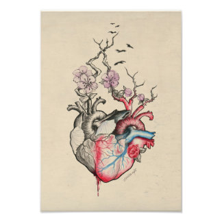 Love art two anatomical hearts with flowers Print Photo Art