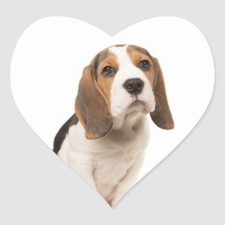 Love Beagle Puppy Dog Heart Sticker