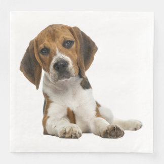 Love Beagle Puppy Dog Wedding Party Disposable Napkins