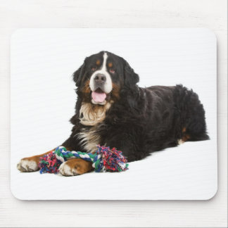 Love Bernese Mountain Dog Puppy Mousepad