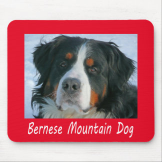 Love Bernese Mountain Puppy Dog Red Mouse Pad