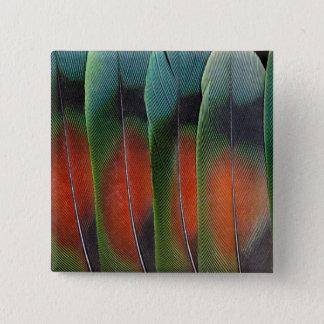 Love Bird Tail Feather Design 15 Cm Square Badge