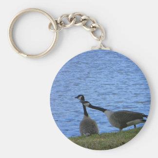 Love Birds Color Key Ring