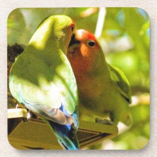 Love birds drink coaster