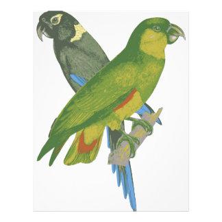 Love birds flyer design