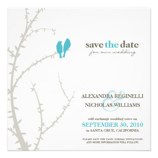 Love Birds Save the Date Announcement (aqua)