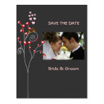 love birds/Save the Date Photo/DIY colour!!