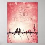 Love birds story print