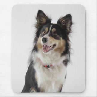 Love Border Collie Puppy Dog Mousepad