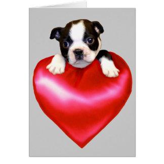 Love Boston Terrier greeting card