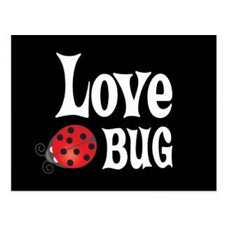 Love Bug - Ladybug Postcard