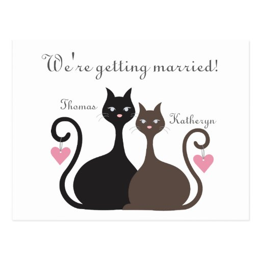 Love Cats Save The Date Announcement Postcard