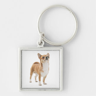 Love Chihuahua Puppy Dog Key Chain