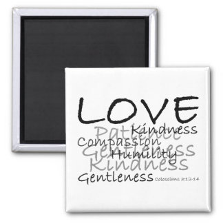 Love Colossians 3 Magnet