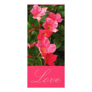 Love Customized Rack Card