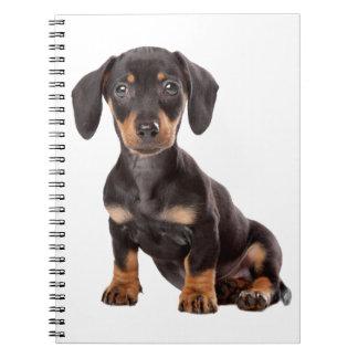 Love Dachshund Puppy Black & Tan Dog Notebook