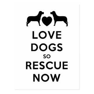 Love Dogs So Rescue Now Postcards