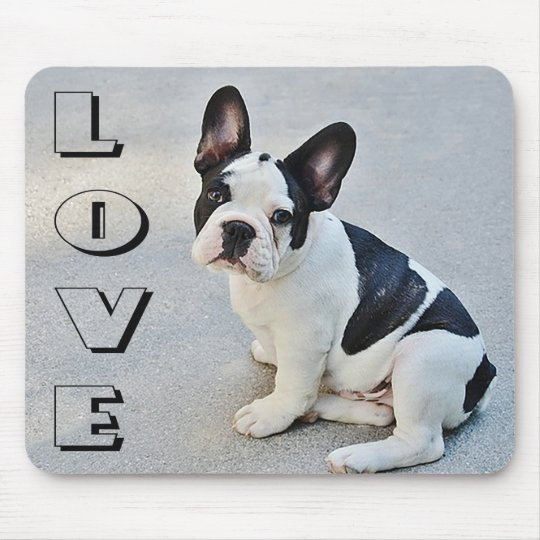 Love French Bulldog Black And White Puppy Dog