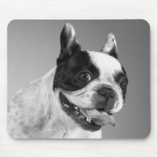 Love French Bulldog Puppy Dog Black And White Mouse Mat