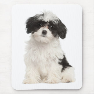 Love Havanese Puppy Dog Mousepad
