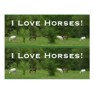 Love Horses! Bookmarkers - Customize! Postcard