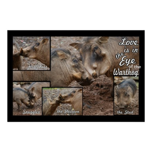 Love in the Eye of the WartHog Poster