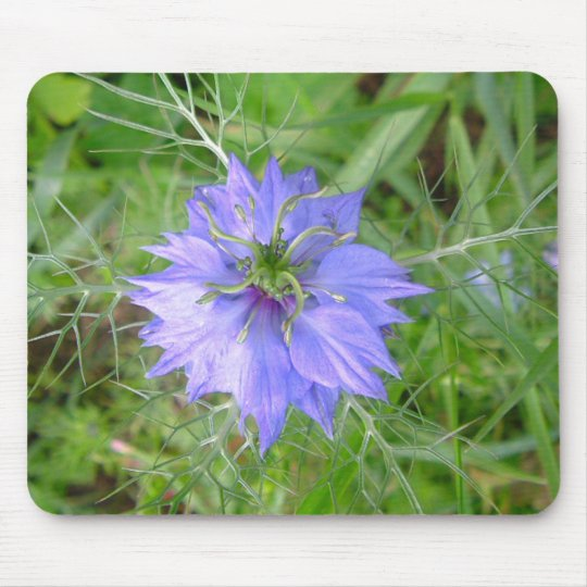 love in the mist flower mouse mat
