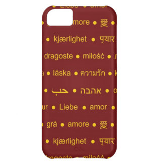 Love international words iPhone 5C case