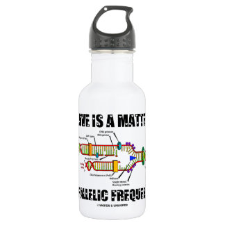 Love Is A Matter Of Allelic Frequency (DNA) 532 Ml Water Bottle