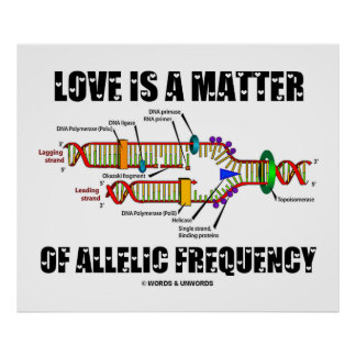 Love Is A Matter Of Allelic Frequency (DNA) Poster