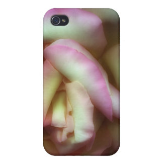 <Love is a Rose> by Nathan Griffith Case For The iPhone 4