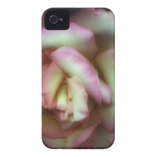 <Love is a Rose> by Nathan Griffith iPhone 4 Case-Mate Case