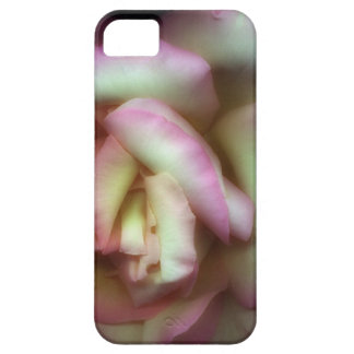 <Love is a Rose> by Nathan Griffith iPhone 5 Cover