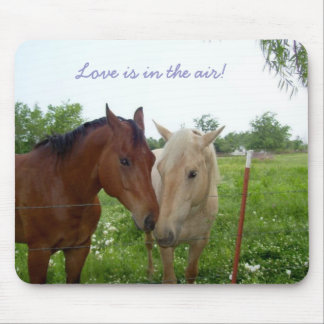 Love Is In The Air - Horses Mouse Pad