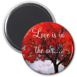 Love is in the air... 6 cm round magnet