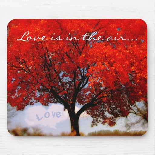 Love is in the air... mouse pad