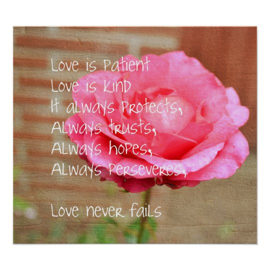 Love is Patient Rose Poster