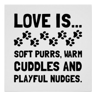 Love Is Soft Purrs Poster