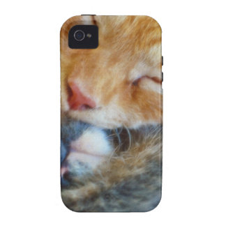 Love Is Two Sleeping Kittens Cat-lovers Gift Vibe iPhone 4 Covers