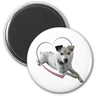 Love Jack Russell Dog Gifts Magnet