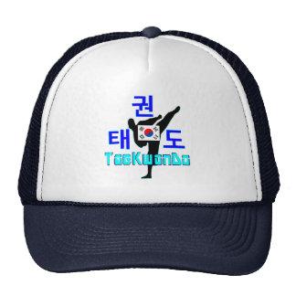 ❤☯✔Love Korean Martial Art-TaeKwonDo Chic Trucker Cap